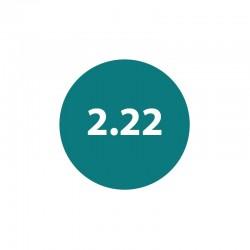 Гель-лак Naivy Professional 2.22 8мл